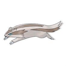 Linoone #264 (Rushing Pokemon) - Pokedex :: PokeDream
